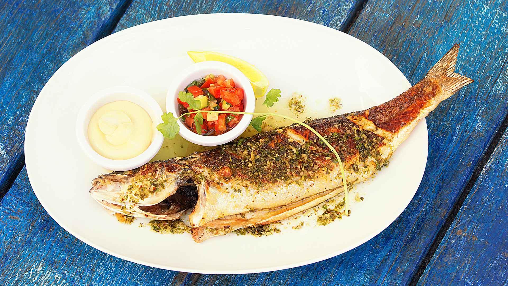 Restaurant-Les-Planches-Argeles-sur-Mer-Specialite-Poissons-Fruits-de-Mer-Les-Planches-Loup-de-Mediterranee